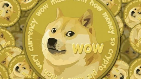 What is DOGE